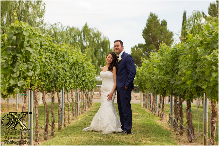 Robert stacy39s wedding ardovino39s desert crossing for Wedding photographers in el paso tx