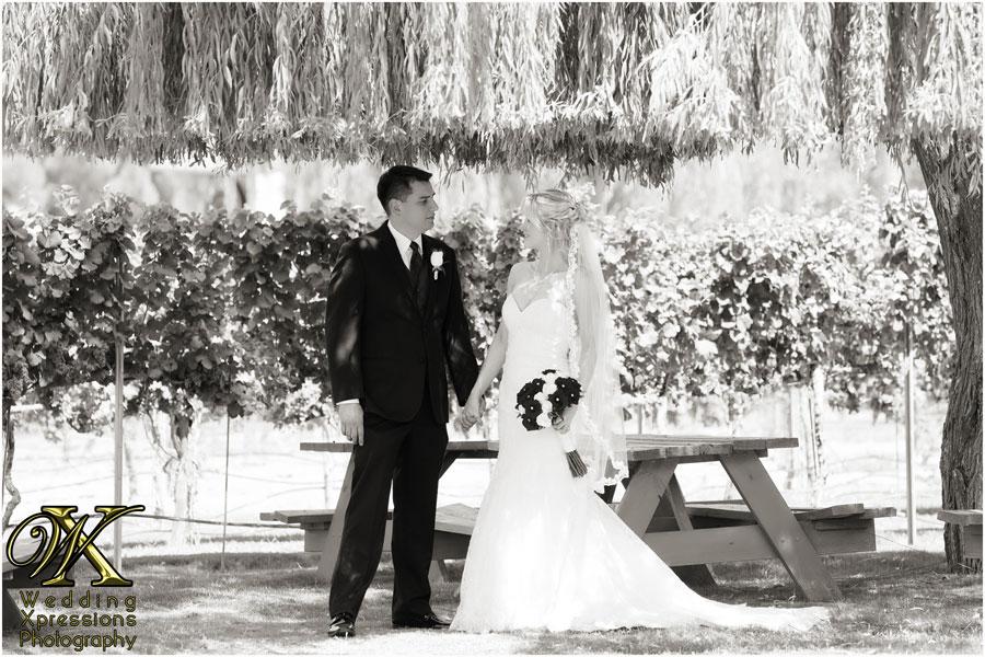 Fernando erica39s wedding at grace gardens in el paso tx for Wedding photographers in el paso tx